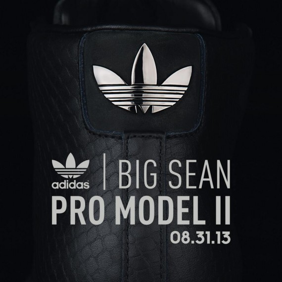 "Big Sean x Adidas Pro Model ""Detroit Player"""