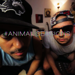 animals session